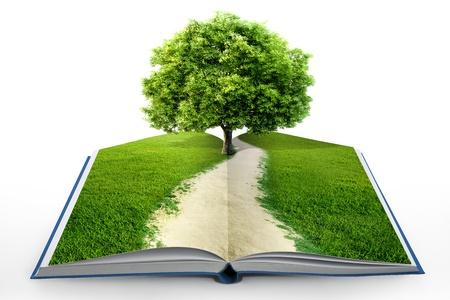 portadas de libros: libro de la naturaleza aislado en blanco Foto de archivo