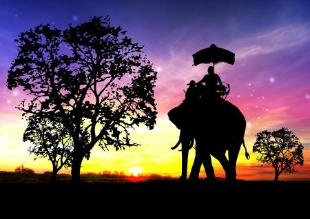 ayuttaya: elephant silhouette in thailand