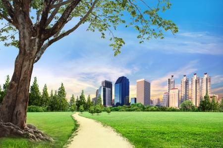 bioedilizia: Urban City Skyline al mattino con lo spazio Archivio Fotografico