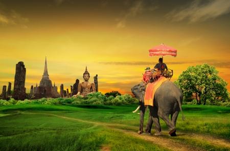 elefante: Puesta de sol paisaje tailandia tailand�s Foto de archivo