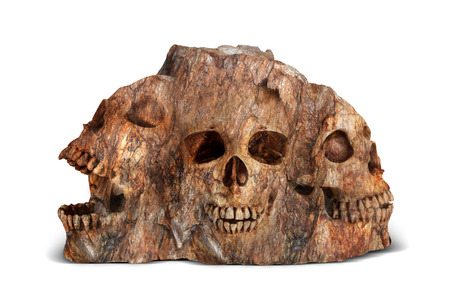 cliff face: skulls in stone, concept