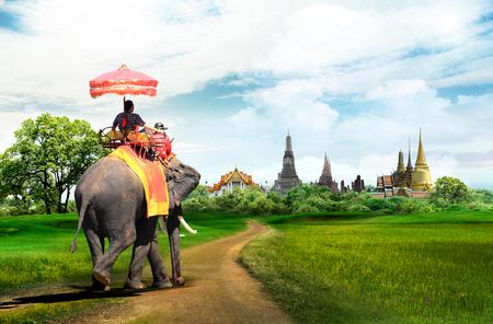 タイ ・ バンコク、コンセプトで象に乗って観光客のためのツアーします。