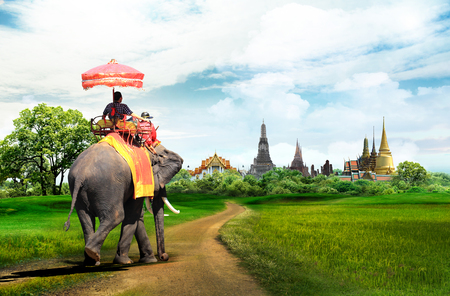 Elefanten für Touristen auf einer Radtour in Bangkok, Thailand, Konzept