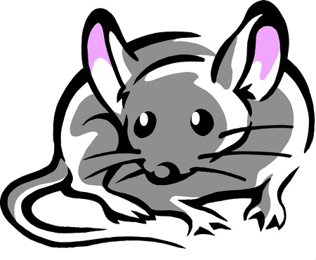 Mouse with big pink ears  Vector