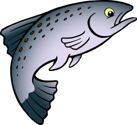 Cartoon Vector illustration of a Salmon or Trout Fish Çizim