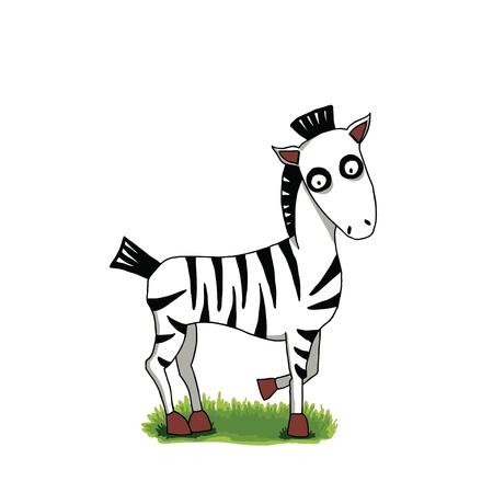 Illustration of cute cartoon zebra on green grass