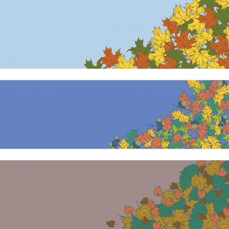 Autumn leaves background banner