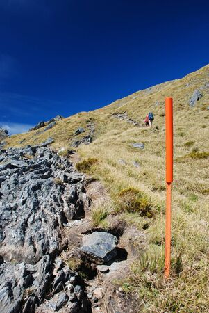 Hiking in New Zealand Stock Photo - 13643536