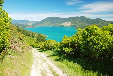 charlotte: Queen Charlotte track, New Zealand