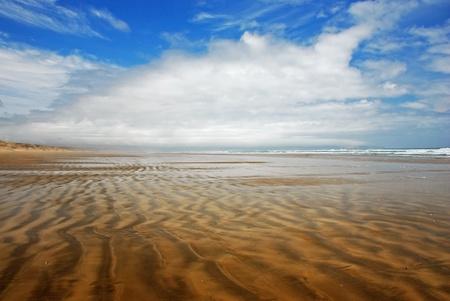 new zealand beach: Ninety Mile Beach, New Zealand