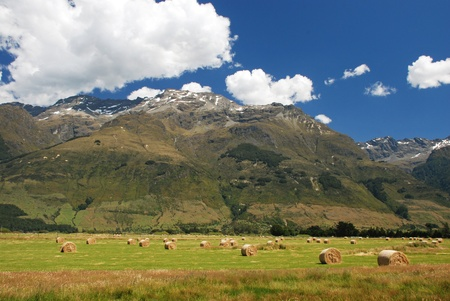 lord: New Zealands countryside