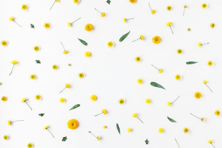 Flowers composition. Frame made of various yellow flowers on white background. Flat lay, top view Zdjęcie Seryjne - 74779871