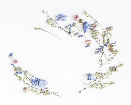 Blumen Zusammensetzung. Feld gemacht von den Trockenblumen auf weißem Hintergrund. Flache Lage, Draufsicht
