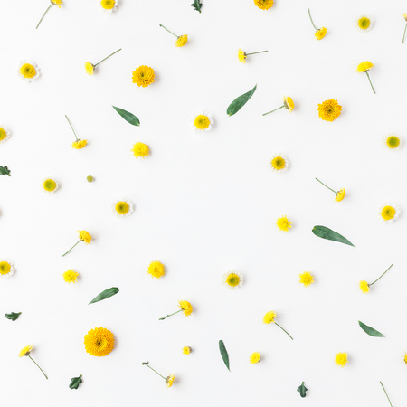 Flowers composition. Frame made of yellow flowers on white background. Flat lay, top view, square