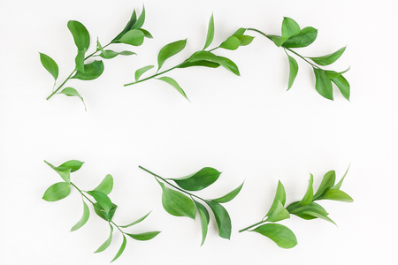 Leaf pattern. Frame made of green leaves. Flat lay, top view