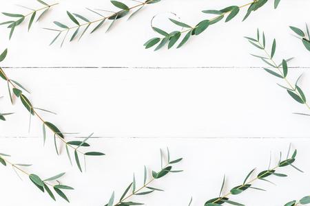 ユーカリ木製の白い背景の上。フレームは、ユーカリの枝から成っています。フラット横たわっていた、トップ ビュー