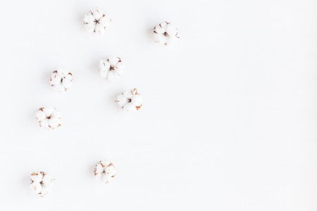 Flowers composition. Cotton flowers on white background. Flat lay, top view