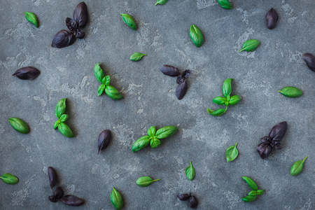 Basil pattern. Fresh different basil on black background. Flat lay, top view Stock Photo