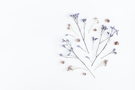 Flowers composition. Pattern made of dried flowers on white background. Flat lay, top view