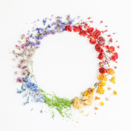 Flowers composition. Wreath made of rainbow flowers on white background. Flat lay, top view Stok Fotoğraf - 81913697