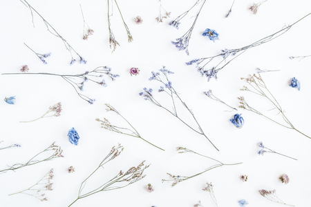 Flowers composition. Pattern made of dried flowers on white background. Flat lay, top view Reklamní fotografie