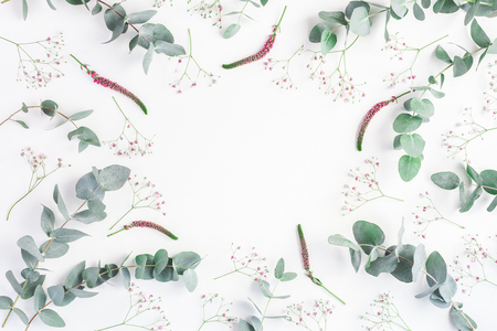 Flowers composition. Round frame made of pink gypsophila flowers and eucalyptus branches on white background. Flat lay, top view, copy space