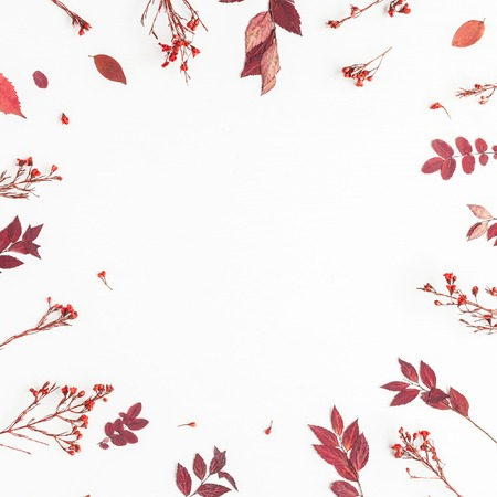 Herbst Zusammensetzung. Blumenrahmen gemacht von den Herbstblumen und -blättern. Flache Lage, Draufsicht, Quadrat, Textfreiraum Standard-Bild - 82356843