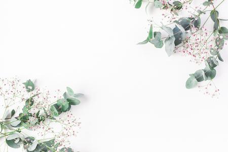 꽃 조성입니다. 핑크 gypsophila 꽃과 흰색 배경에 유칼립투스 분기의 만든 프레임. 평평한 가로, 평면도, 복사 공간