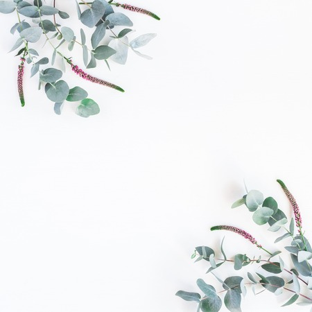 Flowers composition. Frame made of pink flowers and eucalyptus branches on white background. Flat lay, top view, copy space, square