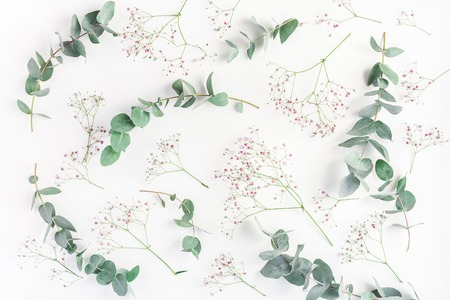 Flowers composition. Abstract pattern made of pink gypsophila flowers and eucalyptus branches on white background. Flat lay, top view Stock Photo