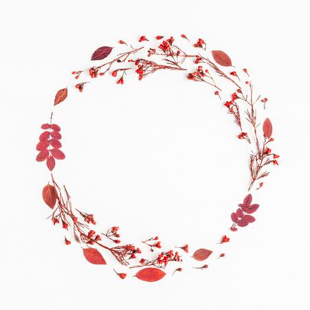 Herbst Zusammensetzung. Kranz aus herbstlichen roten Blättern und Blüten. Flache Lage, Draufsicht, Textfreiraum, Quadrat Standard-Bild - 83715922