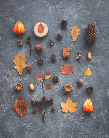 Herfstsamenstelling. Patroon gemaakt van herfstbladeren, anijsster, dennenkegels op donkere achtergrond. Vlak gelegen, bovenaanzicht