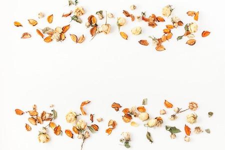 秋の組成物。乾燥した秋の境界線は花し、白い背景の葉します。フラット レイアウト、表示、コピー領域をトップします。