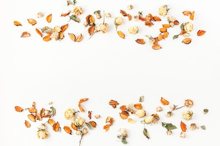 Autumn composition. Border made of autumn dried flowers and leaves on white background. Flat lay, top view, copy space. Archivio Fotografico