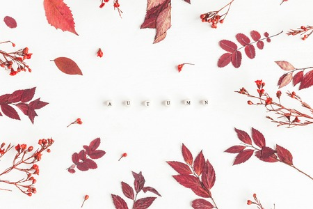 Autumn composition. Word Autumn, red flowers and leaves on white background. Flat lay, top view Stock fotó