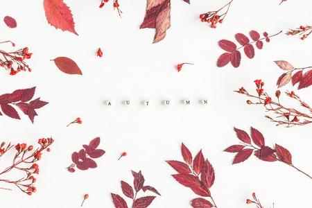 Herbst Komposition. Fassen Sie Herbst, rote Blumen und Blätter auf weißem Hintergrund ab. Flache Lage, Draufsicht Standard-Bild - 84342907