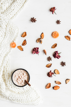 Autumn. Hot chocolate, knitted blanket, dried flowers and leaves. Flat lay, top view Stok Fotoğraf