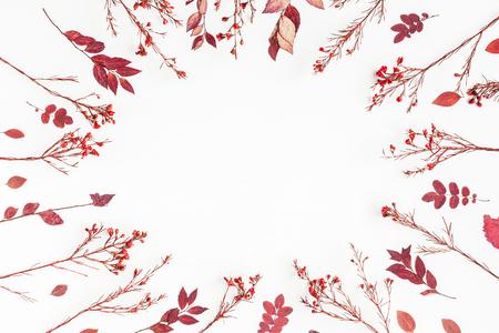 秋季構圖。由秋天的花和葉子製成的框架。平躺,頂視圖,副本空間 版權商用圖片