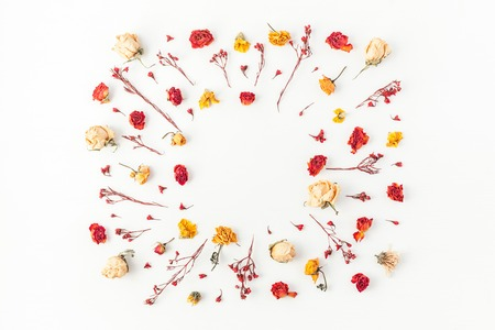 Autumn composition. Frame made of autumn dried flowers on white background. Flat lay, top view, copy space 写真素材