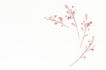 秋季構圖。框架由秋天的紅色花朵。平躺,頂視圖,副本空間 版權商用圖片