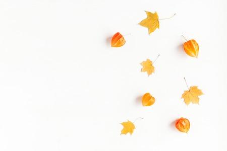 秋季構圖。框架由秋天的楓葉和生花開花。平躺,頂視圖,副本空間 版權商用圖片