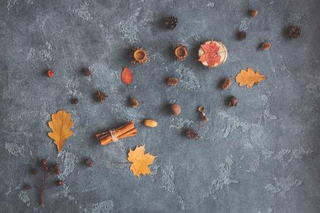 Jesienna kompozycja. Wzorzec z liści jesienią, anyż gwiazda, szyszki sosny na ciemnym tle. Płaski, górny widok