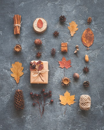 Jesienna kompozycja. Dar, jesienne liście, pałeczek cynamonu, anyż gwiazd, szyszek sosny na czarnym tle. Płaski, górny widok Zdjęcie Seryjne