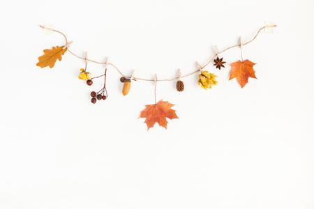 Composición del otoño. Flores y hojas del otoño, bellota, cono del pino, estrella del anís. Flat lay, vista desde arriba, copia espacio
