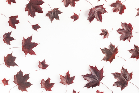 Autumn composition. Frame made of autumn red maple leaves on white background. Flat lay, top view