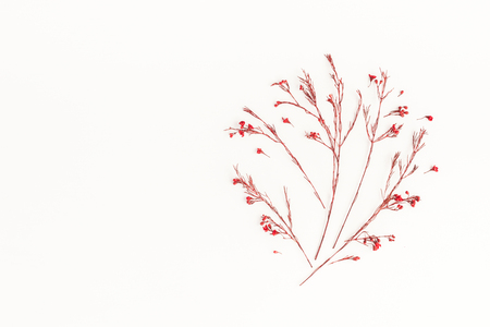 Autumn composition. Tree made of autumn red flowers. Flat lay, top view, copy space