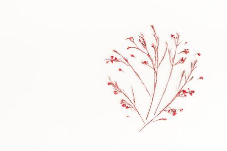 Jesienna kompozycja. Drzewo z jesieni czerwone kwiecie. Płaski, górny widok, miejsce na kopię Zdjęcie Seryjne