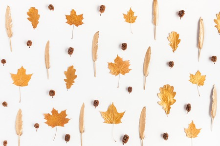 Autumn composition. Pattern made of autumn maple tree leaves and pine cones on white background. Flat lay, top view