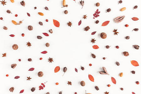 Jesienna kompozycja. Rama wykonana z jesieni. Płaski, górny widok, miejsce na kopię