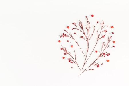 Jesienna kompozycja. Drzewo z jesieni czerwone kwiecie i jagody. Płaski, górny widok, miejsce na kopię